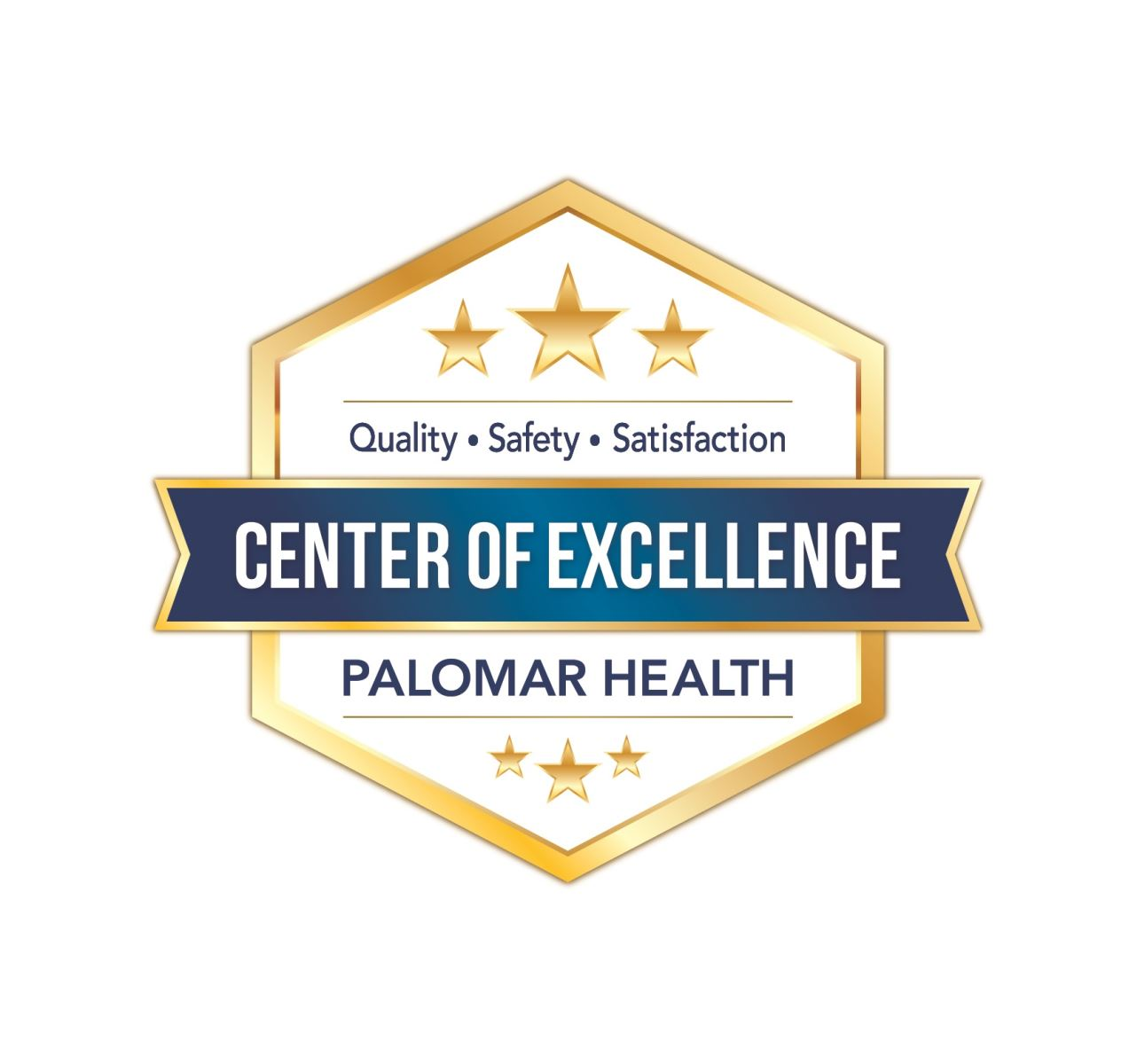 Palomar Health  Certificate of Excellence Award